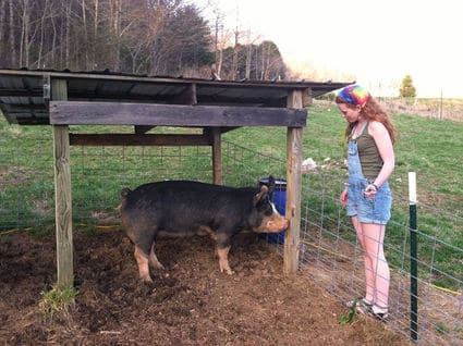 student on a farm with a pig